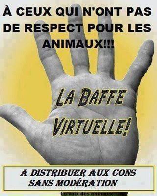 LA BAFFE VIRTUELLE Baffe10