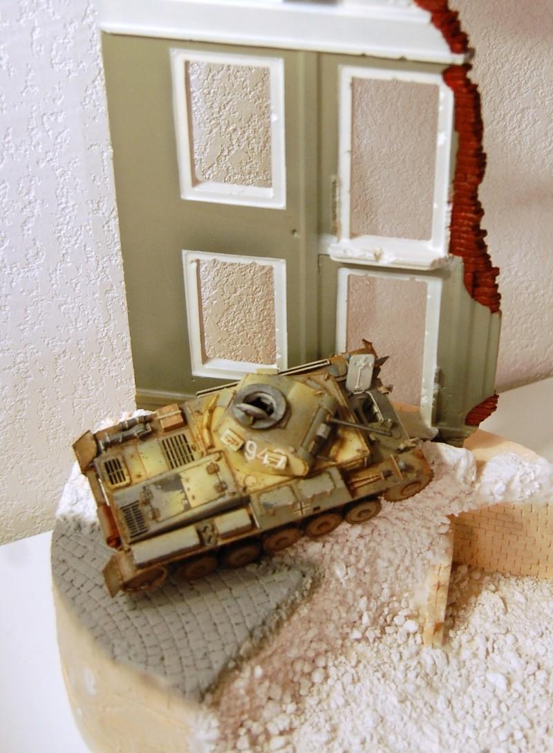 panzer - [Pedrolemac] Stalingrad - le tombeau de la Wehrmacht - panzer II  - Page 4 Dsc_0210
