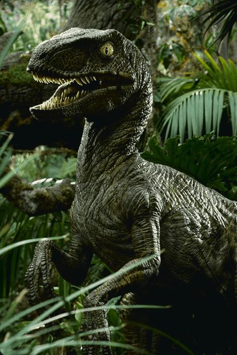 Vélociraptor Jurassic Park. - Page 2 Jprap210
