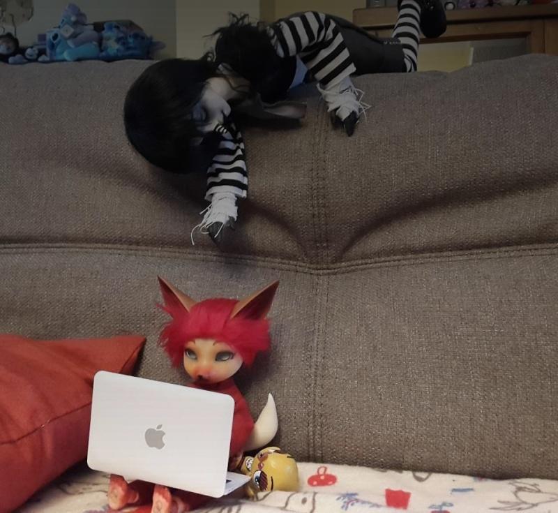 [Popidoll Fox] Goupix et Goupixia le duo de renard geek 0210