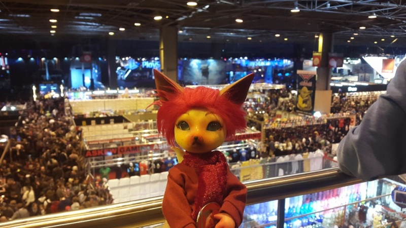 [Popidoll Fox] Goupix et Goupixia le duo de renard geek 10390510