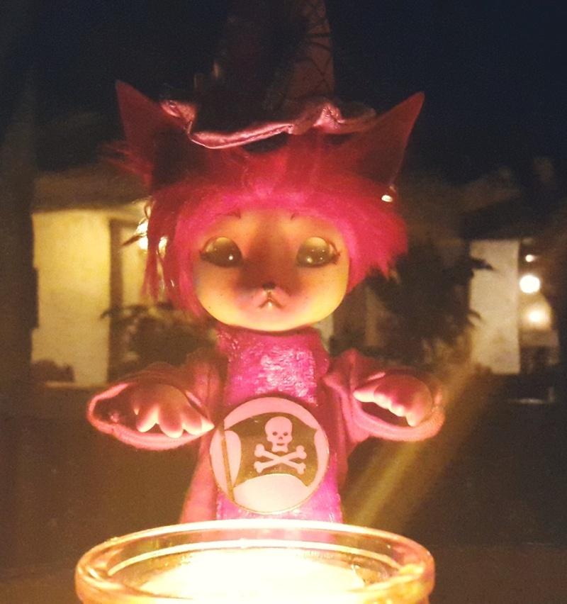 [Popidoll Fox] Goupix et Goupixia le duo de renard geek 12140811