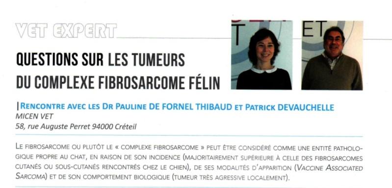 Le fibrosarcome félin Fibros10