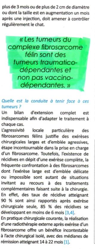 Le fibrosarcome félin Fibros12