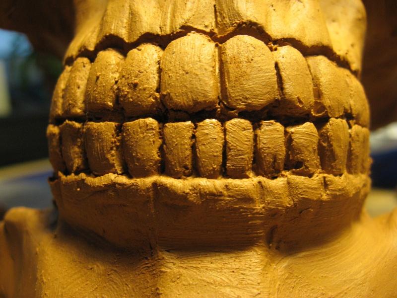Dentaire, pas à pas. Crane310