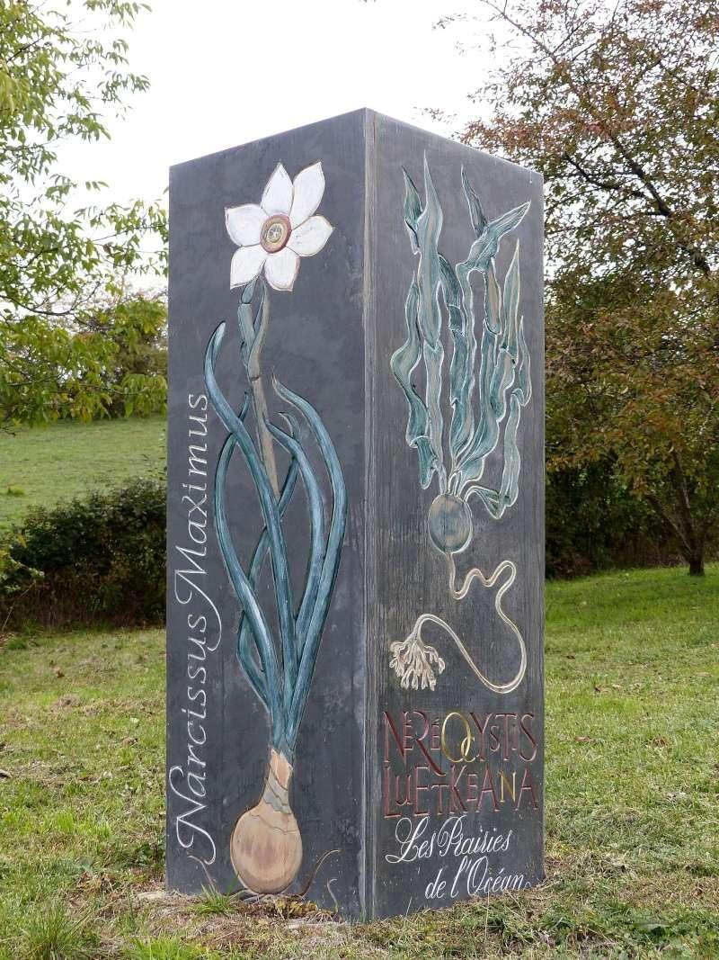 Mémoire de pierre (et ajouts) P1030511