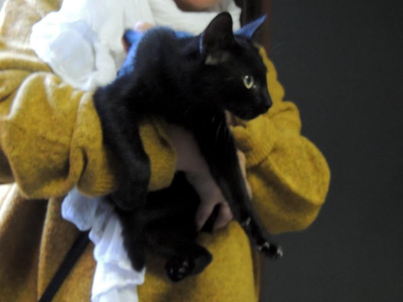 Adoption de MUSKA-27 septembre 2015 Mercre25
