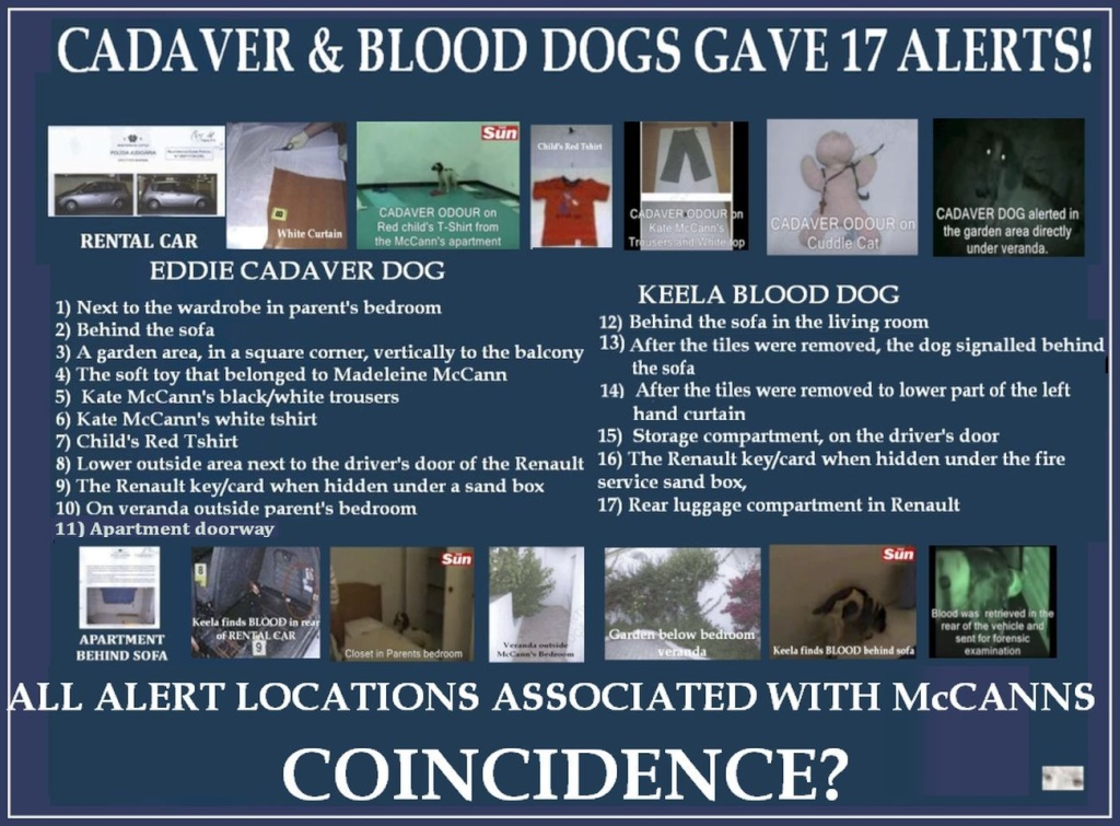 17 alerts by CADAVER & BLOOD dogs and 17 Questions that demand answers! 17_ale10