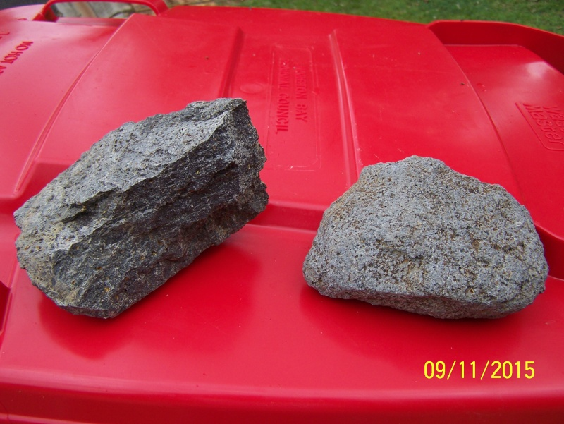 Are These Rocks Andesite & Would they contain Gold? 100_0912