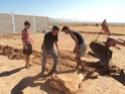 [Maroc Camp/Dernières nouvelles]  BOUIZAKARNE : Camping Tinnoubga   - Page 3 Image18