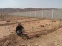 [Maroc Camp/Dernières nouvelles]  BOUIZAKARNE : Camping Tinnoubga   - Page 3 Image19