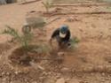 [Maroc Camp/Dernières nouvelles]  BOUIZAKARNE : Camping Tinnoubga   - Page 3 Image20