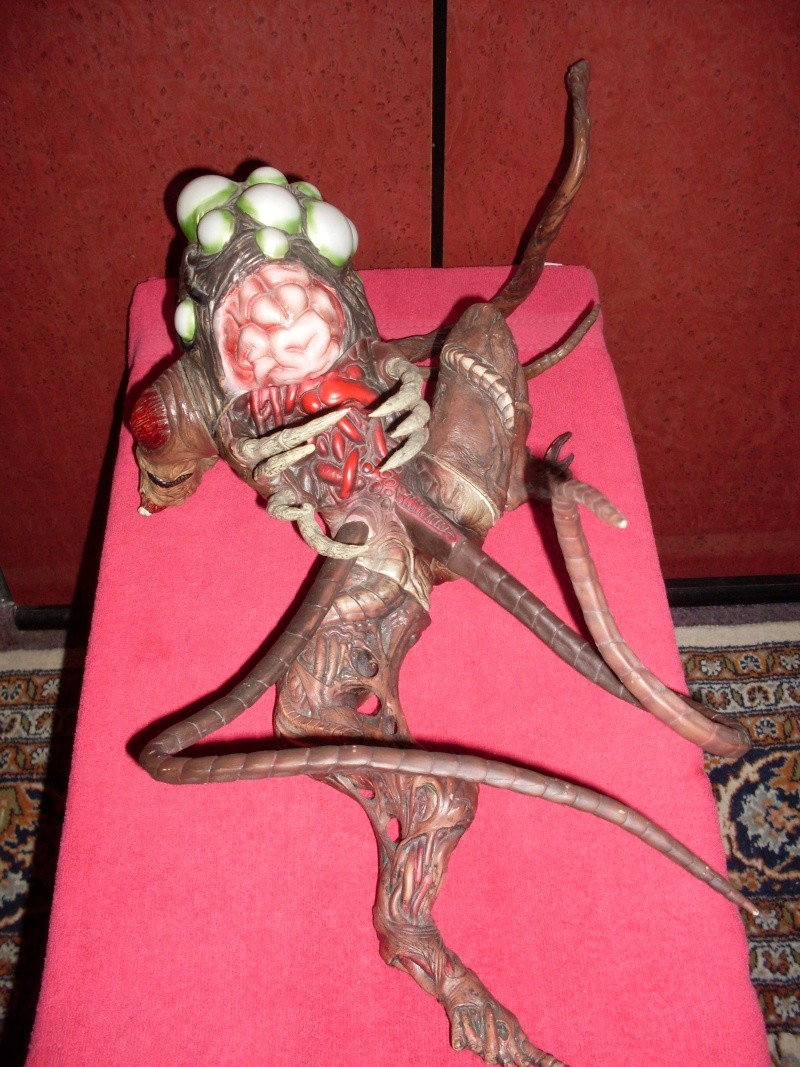Les Figurines & Statues/Saint Seiya - Page 2 Sdc11549