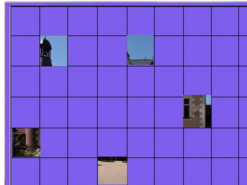 un château - ajonc - 17 septembre trouvé par jovany Un_chy10