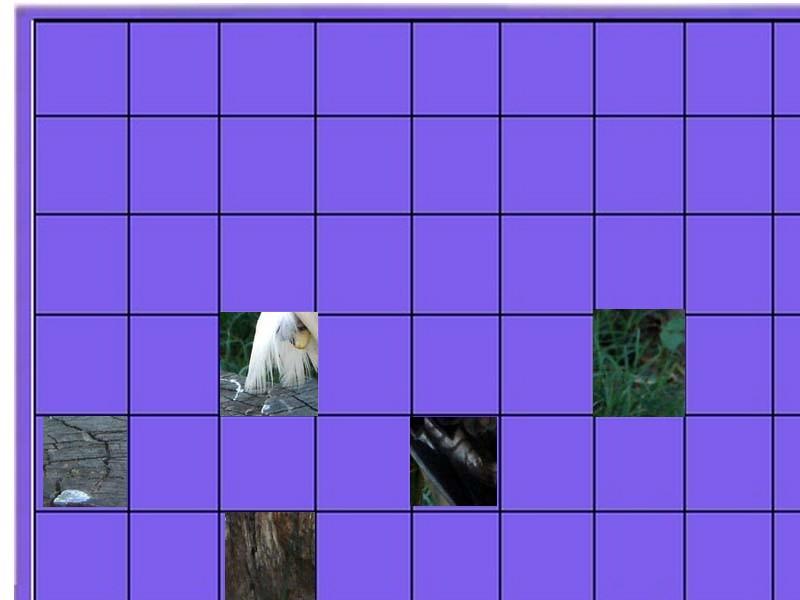 un oiseau - ajonc- 3 novembre Un_ois18