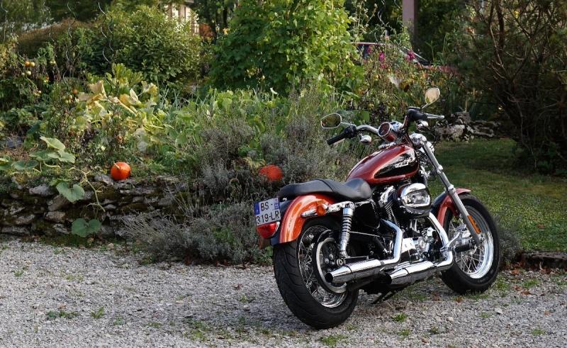 Oui mais il n'y a pas que les motos dans la vie..... - Page 27 Dsc05111