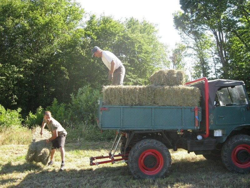samedi à la ferme B16