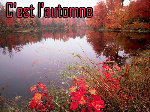 l'automne - Page 2 Automn12