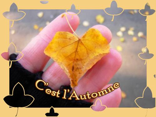 l'automne Automn13