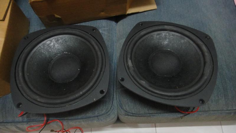 Castle pembroke II bass deiver unit Dsc05013