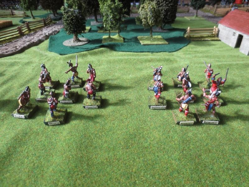 Bataille de Brandywine Img_4627