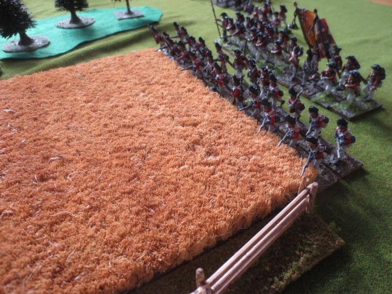 Bataille de Brandywine Img_4630