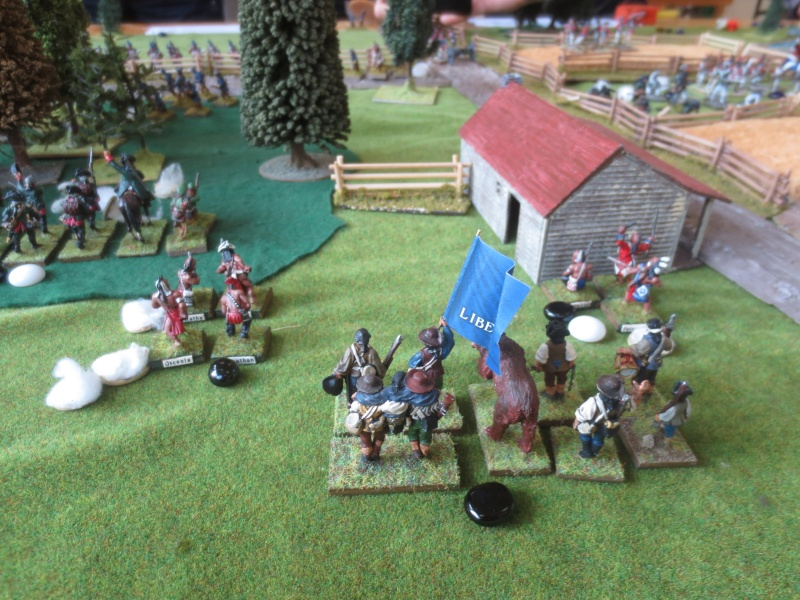 Bataille de Brandywine Img_4645