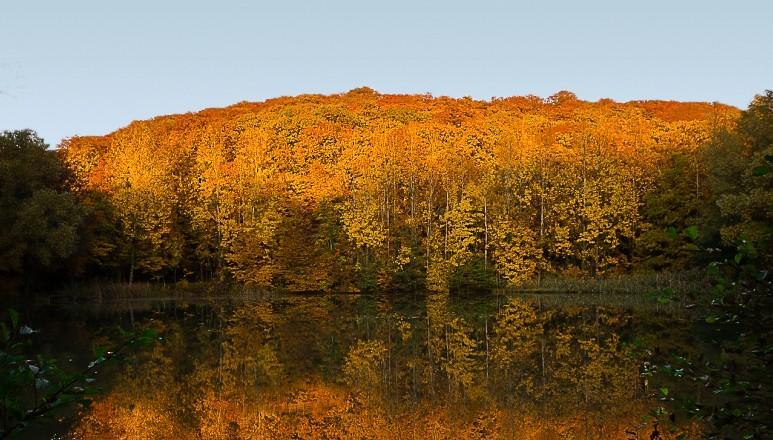 Reflet d'automne _dsc9810