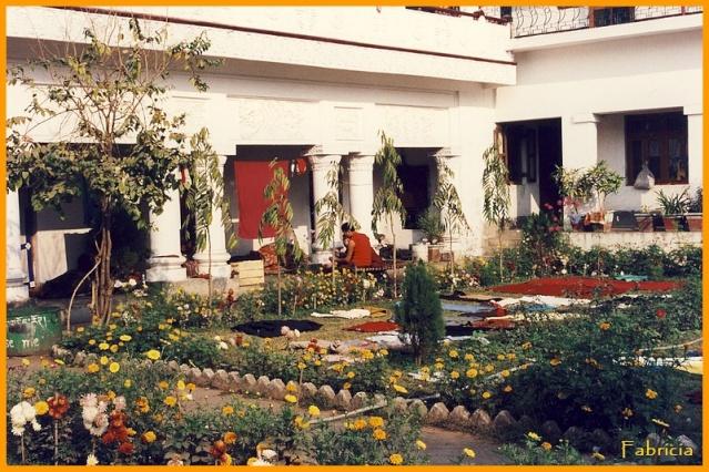 Photos de jardins, parcs, forêts... dans le monde Jardin12