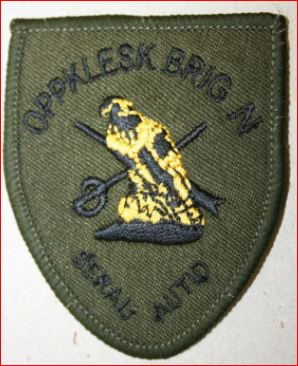 Reproduction/ fake Norwegian patches Fakeol10