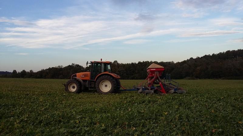 Debut des semis de blé 20151010