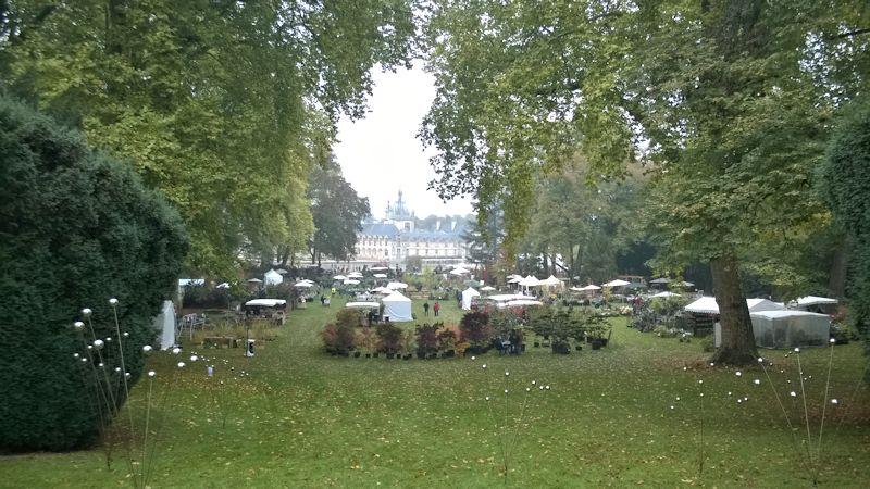 Journées des plantes de Courson les 16, 17 et 18 octobre 2015 à Chantilly (60) Chanti21