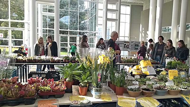 Expo-vente Gardenia à Beauvais (Oise, France) 10 et 11 Octobre 2015 Garden13