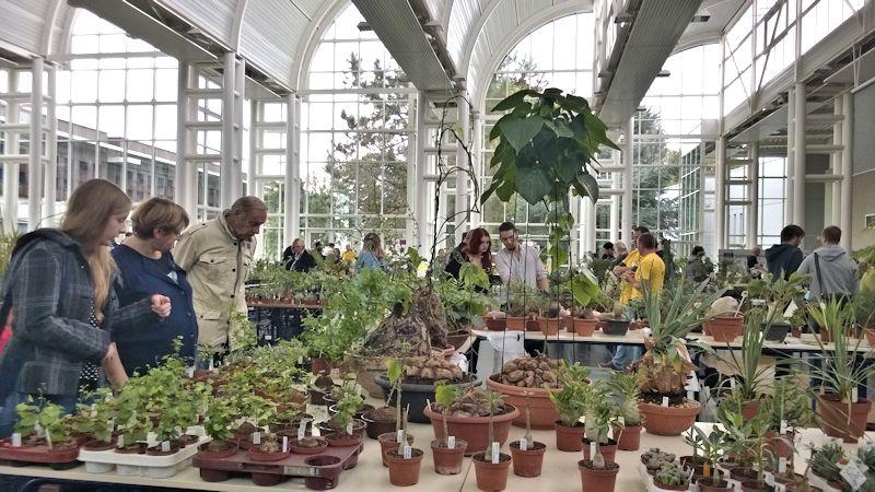 Expo-vente Gardenia à Beauvais (Oise, France) 10 et 11 Octobre 2015 Garden28
