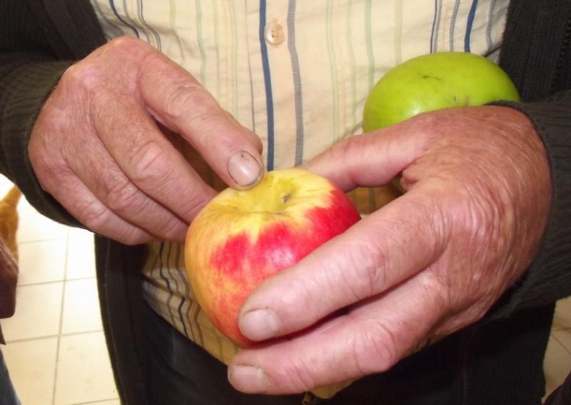 Fête de la Pomme, du Miel et des Champignons 2015 A_pomm10