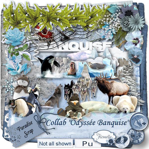 Odyssée Banquise - collab Bijou7 Design, Floralys, Malo et moi - pour le 1er décembre 2015 Collab18