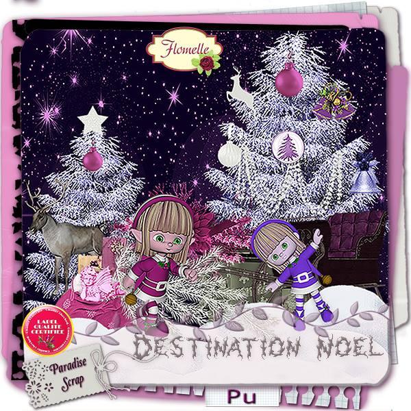 Destination Noël  - 24 novembre 2015 Flomel73