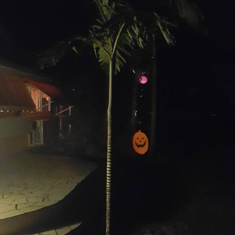 Halloween 2015. Et pour vous ??? Ce sera, quoi ?! 12182810