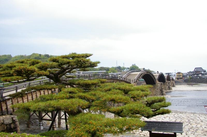 qui a été au japon ?des photos?un prochain départ? photo japon2011 - Page 2 Imgp7112