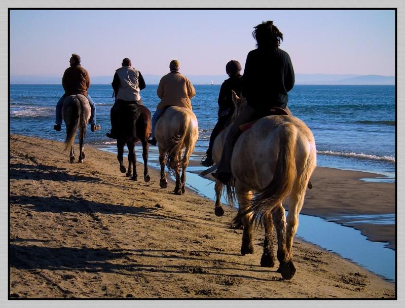 """Défi Post Traitement XVIII : """"Promenade sur la plage"""" Defi1811"""