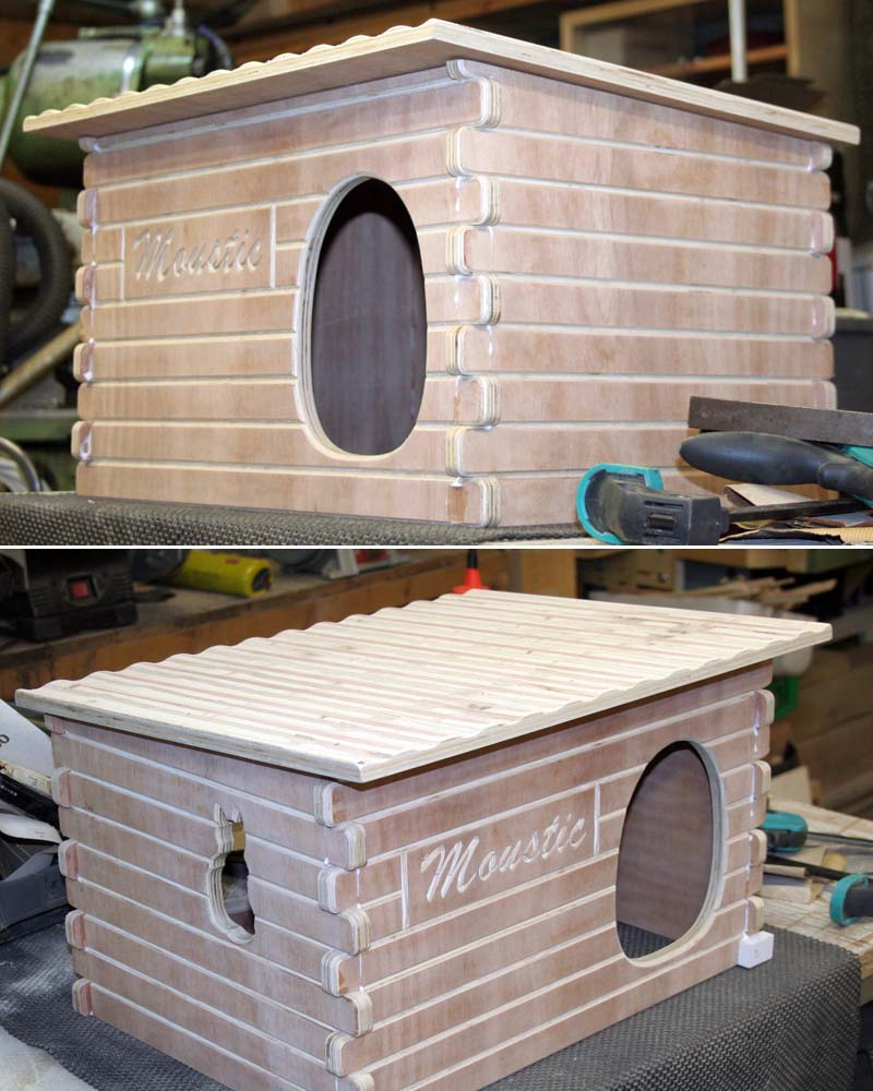 Une maison pour une petite chatte Mousti17