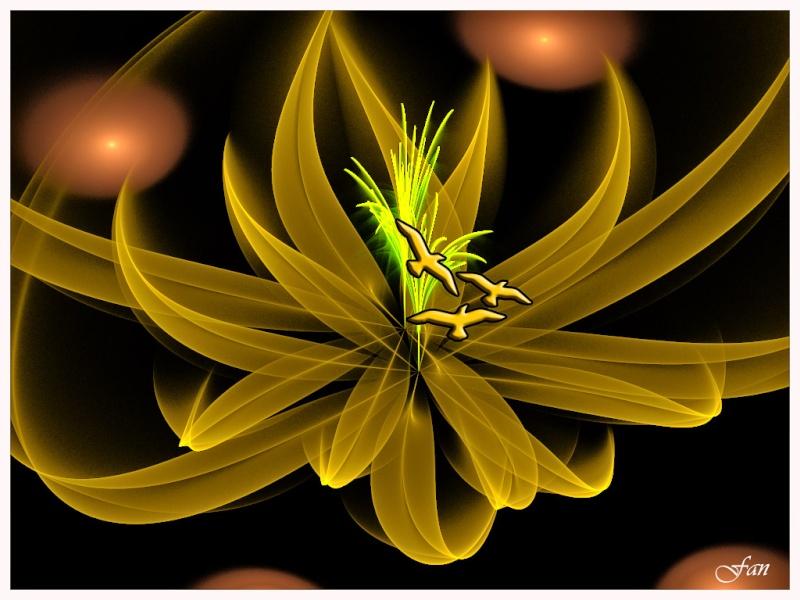 Fractales Fleurs10