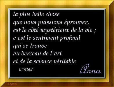 les bonjours du jour - 2011 Einste10