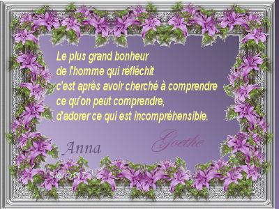 les bonjours du jour - 2011 Goethe11