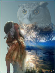 les totems - animaux, plantes et pierres-pouvoirs Ind_hi10