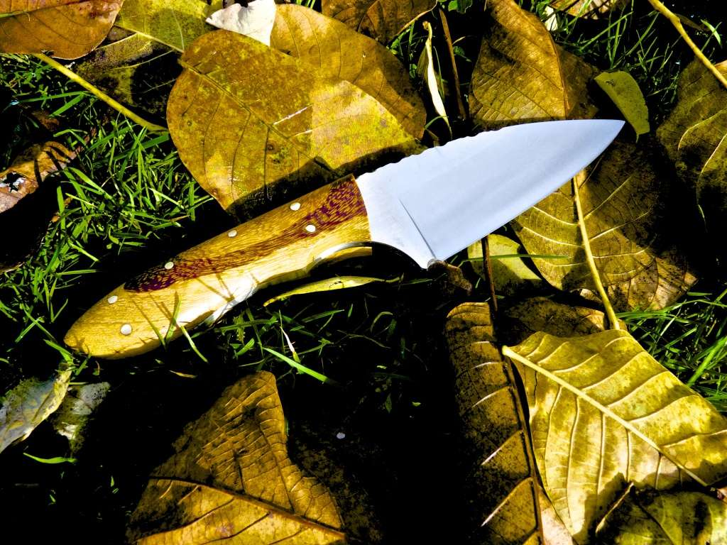 deux couteaux de cuisine  P1090710
