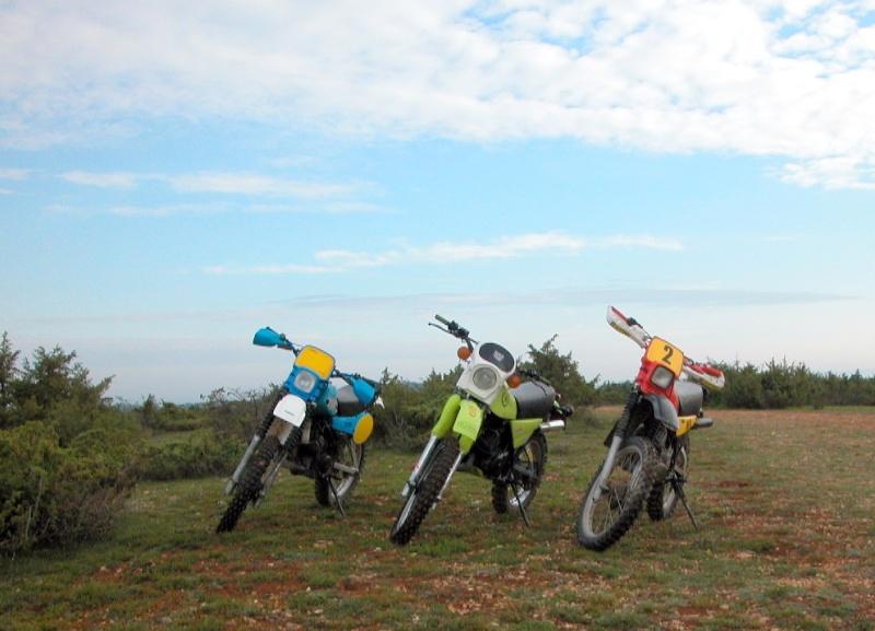 Sortie avec la moto du mois Dscn0418