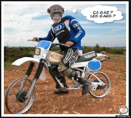 Sortie avec la moto du mois Singe110