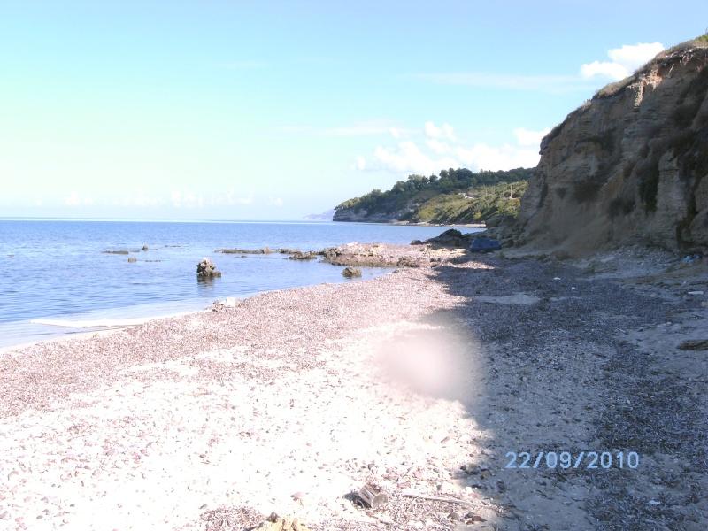retour de vacances la Corse magnifique  - Page 2 Bild1310