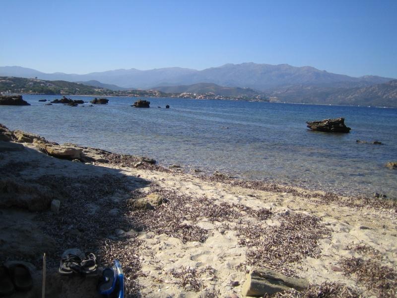 retour de vacances la Corse magnifique  Img_1011